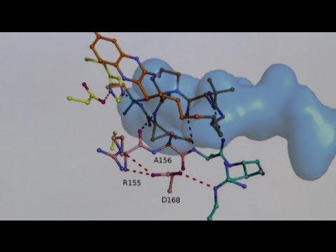 Celia Schiffer, PhD: Drug Resistance