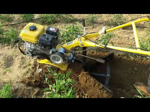 Inter cultivators by using multipurpose