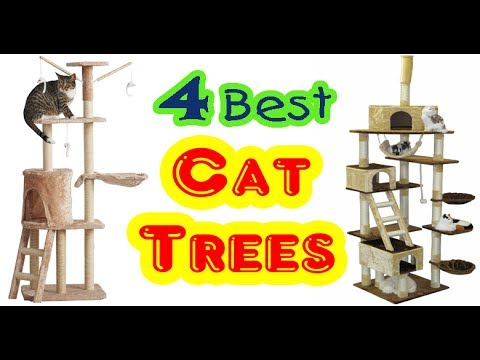 Best Cat Trees for Small Space to Buy in 2017