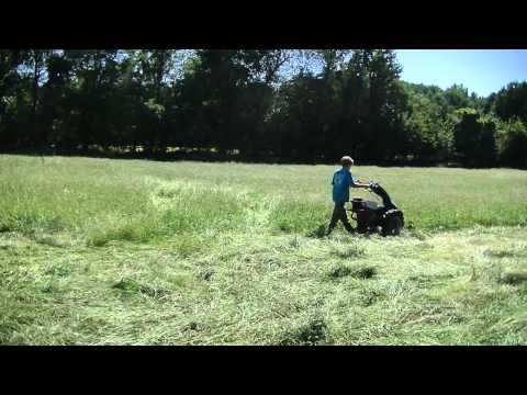 Cutting Hay with a BCS Tractor and Sickle Mower Attachment