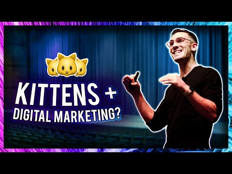 UBER KITTENS VIRAL MARKETING STUNT (#UberKittens)