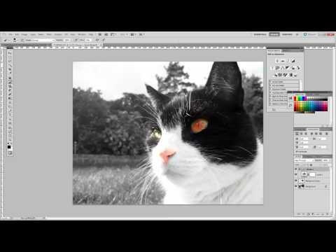 Photoshop CS5 Black and white Beginner tutorial