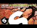 I Am Oak On Trees And Birds And Fire Sam Feldt Bloombox Remi
