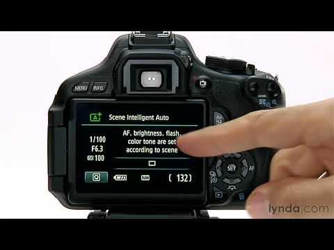 Canon Rebel T3i overview: Setting the auto mode | lynda.com