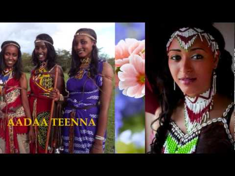 Download **New** Oromo/Oromia Music - Abbush Zallaqaa