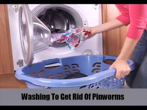 9 Ways to Get Rid Of Pinworms