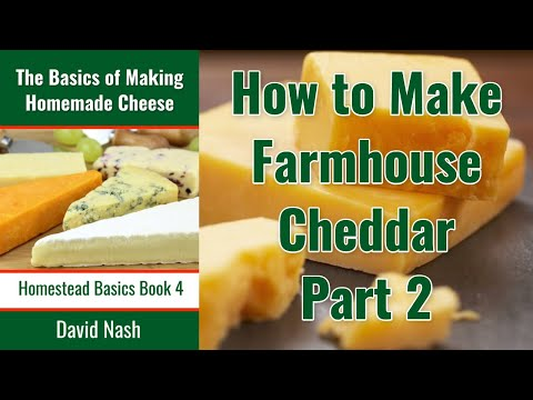 Making Farmhouse Cheddar Part II - Cutting and draining the curd