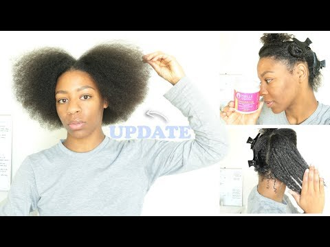 NATURAL HAIR UPDATE + Trying the Mielle Organics Protein/Moisture Replenisher Deep Conditioner