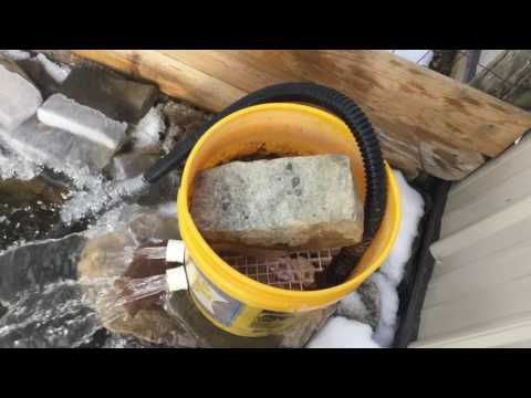 How to make a cheep turtle pond bucket filter.