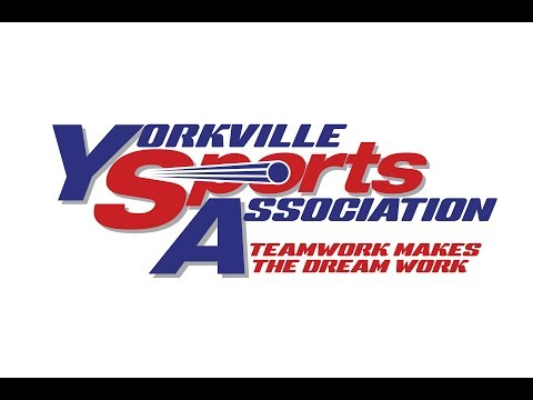 YSA NYC 2016 Softball All Stars (repost)