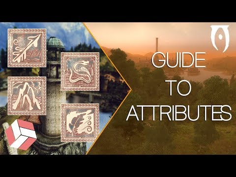 Oblivion - Leveling Guide; Attributes Explained. (2018 Education)