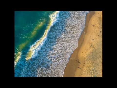 Beach Photos, Ocean Sunsets, Surf, Piers, Beachcombing