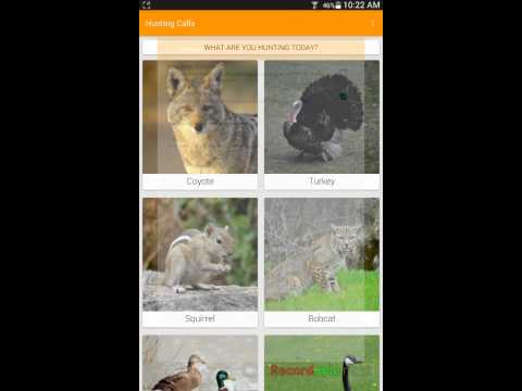 Hunting Calls - Phone/Tablet App Demo