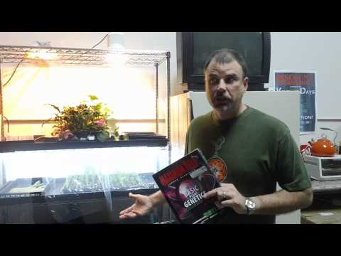 Rack tray video