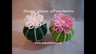 tutorial amigurumi cactus # 1 || misyelshin crochet - YouTube | 180x320