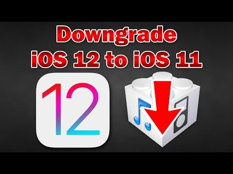 How to Downgrade iOS 12 Beta to iOS 11.4 / 11.3.1 on iPhone, iPod touch & iPad (Without Losing Data)