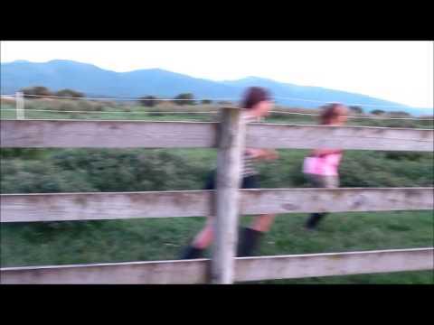 Running With the Bulls  FAIL