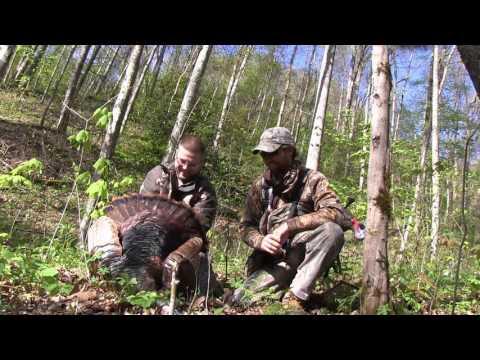 Spectacular Backcountry NC Gameland Wild turkey Hunt