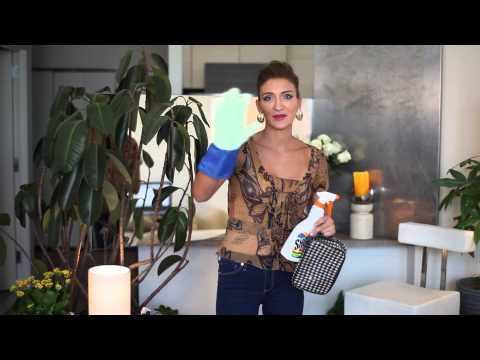 How to Clean a Betsey Johnson Makeup Bag : Makeup Vice