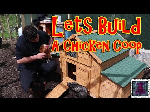 Lets Build A Chicken Coop
