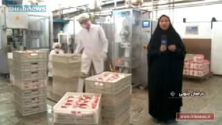 Iran Kouhestan-e Birjand Diary products, Birjand county كارخانه محصولات لبني شهرستان بيرجند ايران