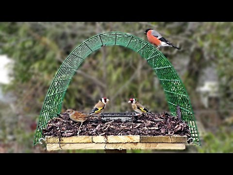 Pigeon Proof Bird Table - Perfect for Goldfinch, Bullfinch, Greenfinch, Robin and Blackcap