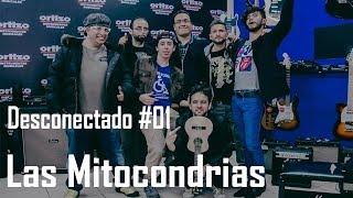 Desconectado #01 - Las Mitocondrias