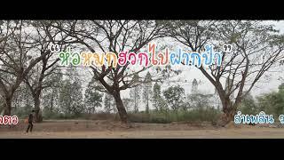 Download ห่อหมกฮวกไปฝากป้า (Ton rak music) Video