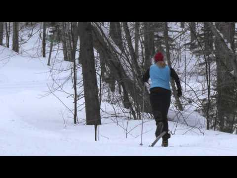 Cross Country Skiing: Classic or Skate?