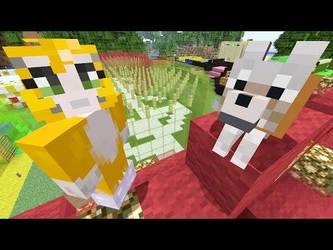 Minecraft Xbox - Snow Globes [364]