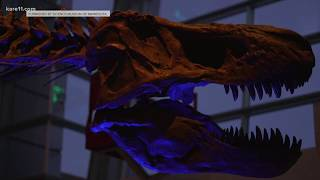 Download Science Museum of MN lights up the night with 'Illumination' exhibit Video