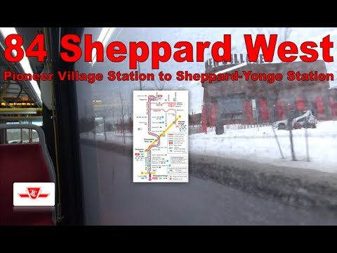 84 Sheppard West - TTC 2015 Nova Bus LFS 8456&98 (Pioneer Village Station to Sheppard-Yonge Station)