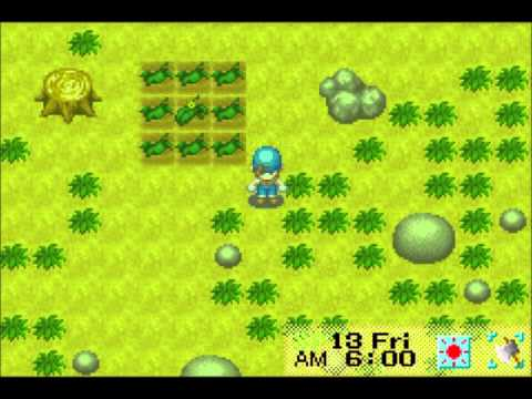 Let's Play Harvest Moon: Friends of Mineral Town 08: Night Life