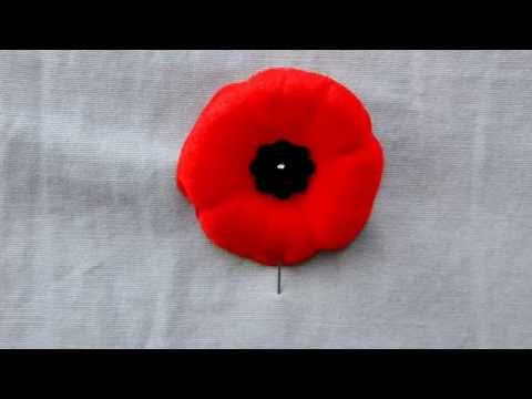 How to securely pin your Poppy on.