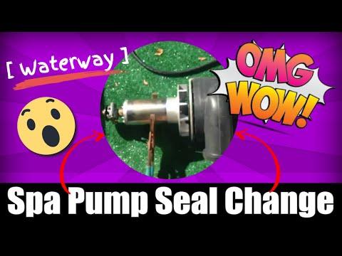 [ Waterway ] Spa Pump Impeller Removal