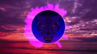 Daniel Caesar - Best Part feat HER (Panther Bass Remix)