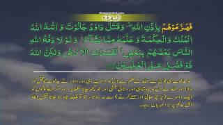 Al Baqarah 002 [251] HD Quran tilawat Recitation Learning word  By word