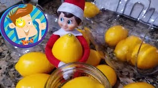 BAD KID MAKES MESS! ELF on the SHELF Dies? OLAF SCARES BABY! Gross Candy + More (FUNnel Vision Vlog)