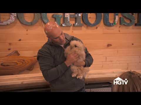 Bryan Baeumler and the Boys Build a Bunny Hutch | Bryan Inc