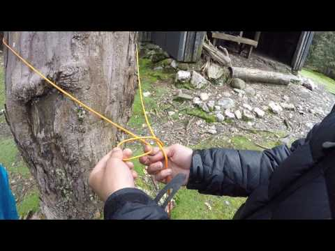 How to Set Up a Clothesline in the Bush