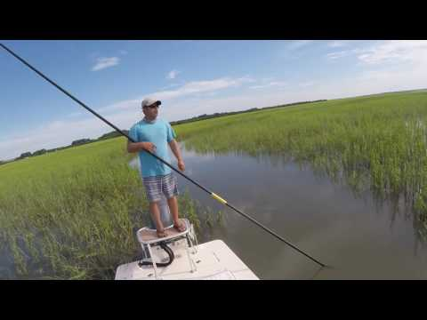 Tarpon & Redfish HIlton Head Trip