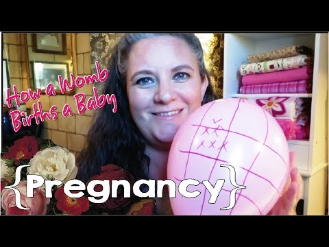 How Your Uterus Births Your Baby (Balloon Demo) ║ Pregnancy #9 Update │ 28 Weeks