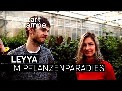 Leyya spielen