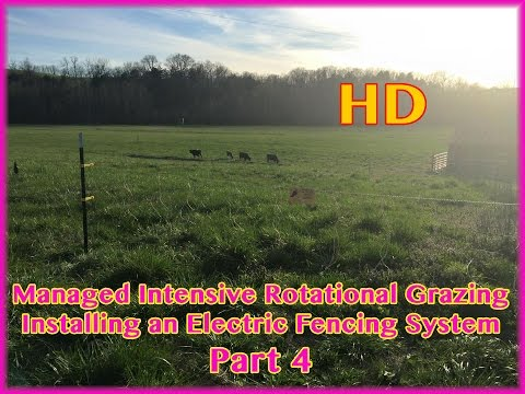 Rotational Grazing Electric Fencing Install - Part 4