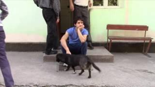 Tajikistan organization Zumrad youth video