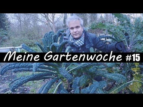 Meine Gartenwoche #15 - Wintergemüse Ernten - Wichteln - Umgraben, uvm