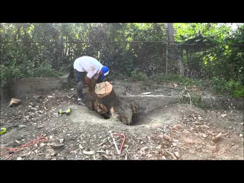 Removing A LARGE Tree Stump-Too Heavy To Lift By Myself