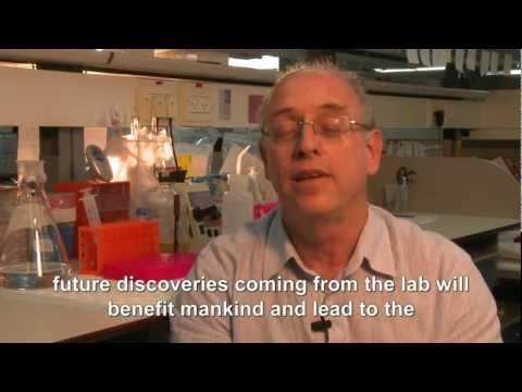 Prof. Gera Neufeld New Cancer Fibrosis Treatments