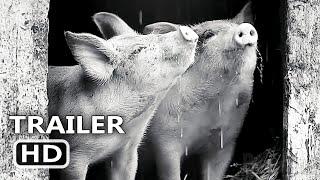GUNDA Trailer (2021) Produced by Joaquin Phoenix