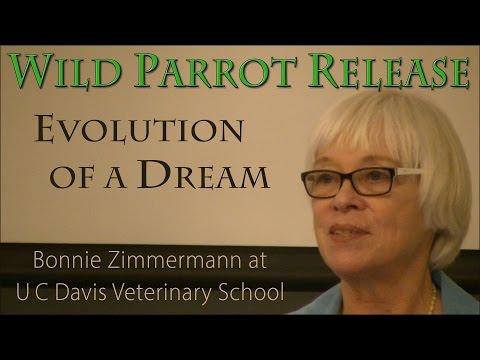 Indonesian Wild Cockatoo Rehabilitation and Release